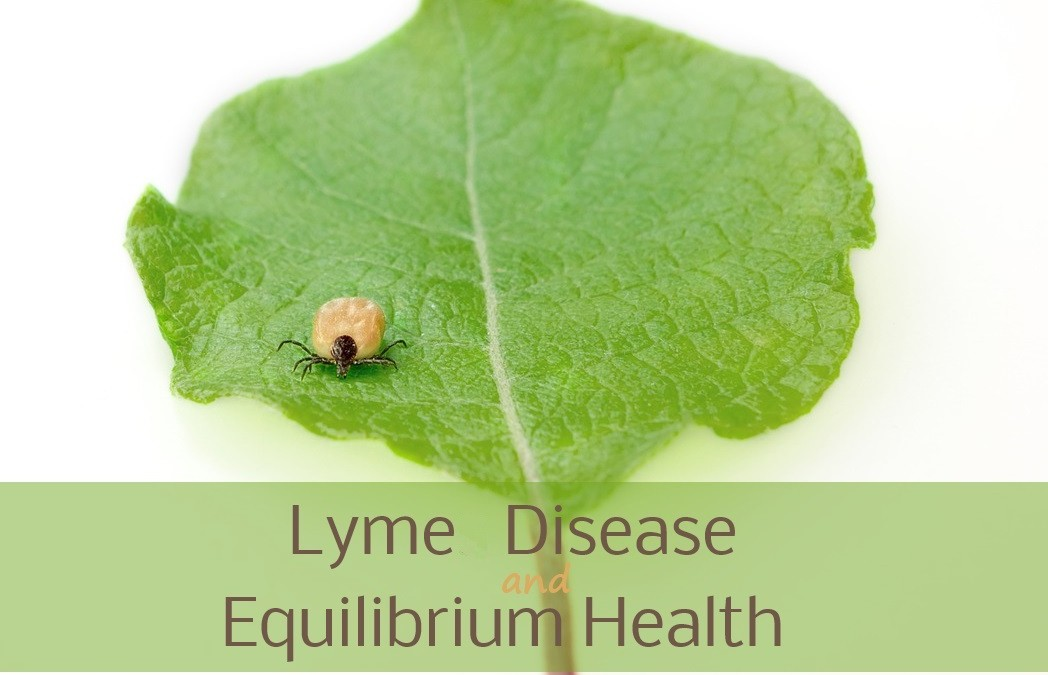 Lyme Disease – What's in what bit you?