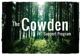 Lyme disease – Lee Cowden Support Programme